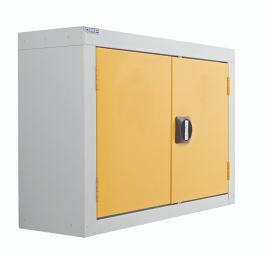 Wall Mounted Workplace Cupboard
