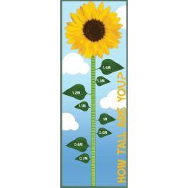 Sunflower Playground Height Chart