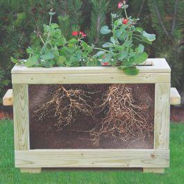 Children's Outdoor Watch Me Grow Planter